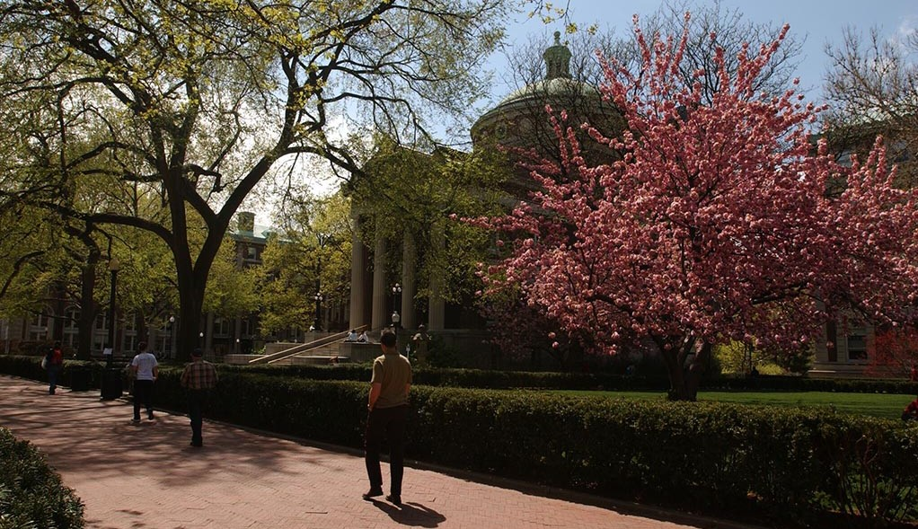 Individuals stroll along the walkway on the campus grounds of Columbia University.
